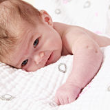 Newborn Baby on a Blanket Royalty Free Stock Photo