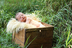 Newborn baby in a box stock image