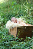 Newborn baby in a box Stock Photos