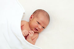 Newborn baby boy Stock Images