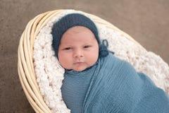 Newborn Baby Boy in a Basket Royalty Free Stock Image