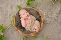 Newborn Baby Boy in Basket on Beach Stock Images