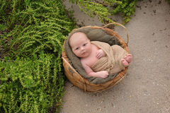 Newborn Baby Boy in a Basket on Beach Stock Photo
