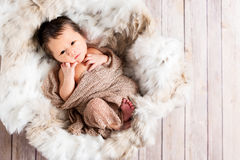 Newborn baby boy in a basket Stock Images