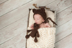 Newborn Baby Boy with Bear Hat and Stuffed Bear Toy Royalty Free Stock Image