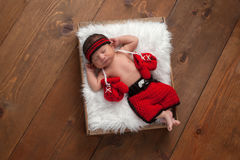 Newborn Baby Boy with Boxing Gloves and Shorts. Eleven day old newborn baby boy wearing boxing shorts. He is lying in a wooden crate lined with white, faux fur Stock Photography