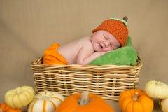 Newborn baby boy Stock Photography