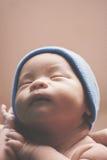 Newborn baby boy in brown Royalty Free Stock Photos