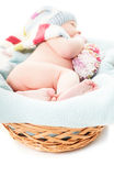 Newborn baby boy Stock Images
