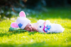 Newborn baby boy with Easter bunny Stock Image