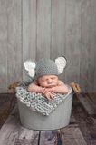 Newborn Baby Boy in an Elephant Costume Royalty Free Stock Photography