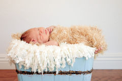 Newborn baby boy in light blue wood container Royalty Free Stock Photography