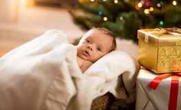 Newborn baby boy lying under blanket next to Christmas tree and Royalty Free Stock Photography