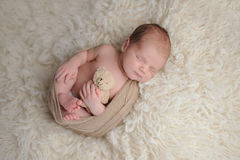 Newborn Baby Boy with Plush Bear Toy royalty free stock image