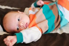 Newborn baby boy portrait Royalty Free Stock Images