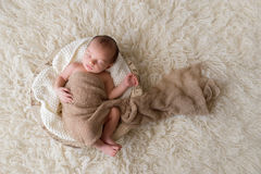 Newborn Baby Boy Sleeping in a Bowl. Two week old newborn baby boy swaddled in a beige wrap and sleeping in a round, wooden, trench bowl. Shot in the studio on a Royalty Free Stock Images