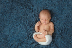 Newborn Baby Boy Sleeping on a Dark Blue Flokati Rug. Three week old newborn baby boy wearing white, crocheted shorts. He is sleeping on his back on a dark blue Royalty Free Stock Photo