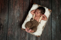 Newborn Baby Boy Sleeping in a Rustic Crate. Overhead shot of a 5 day old newborn baby boy wearing crocheted shorts and suspenders. He is sleeping in an old Royalty Free Stock Photo