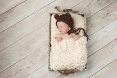 Newborn Baby Boy Wearing a Bear Bonnet. Two week old newborn baby boy wearing a brown, crocheted, bear bonnet. He is sleeping in a rustic wooden crate. Shot in stock photo