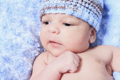 Newborn baby boy wearing a blue. A Closeup of the face of a tiny, newborn baby boy wearing a blue knit hat Royalty Free Stock Images