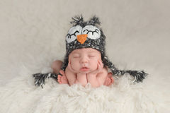 Newborn Baby Boy Wearing an Owl Hat Stock Image