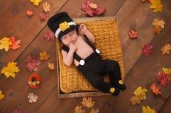 Newborn Baby Boy Wearing a Pilgrim's Costume Royalty Free Stock Image