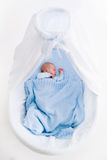 Newborn baby boy in white bassinet Royalty Free Stock Image