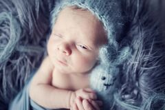 Free Newborn Baby Boy With One Open Eye Wrapped In Blue Wrap On Gray Furry Blanketwith Knitted Toy In Hand And With Blue Woolen Cap On Royalty Free Stock Image - 183539266