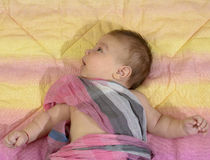 Newborn baby boy wrapped in a pink scarf Stock Photography