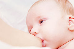 Newborn baby breastfeeding Royalty Free Stock Photos