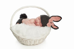 Newborn Baby in Bunny Rabbit Costume Royalty Free Stock Images