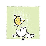 Newborn Baby Chick Royalty Free Stock Image
