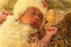 Newborn baby in chicken costume sleeping on fur bed royalty free stock image