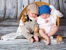 Newborn baby with chicks. Stock Photo