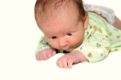 Newborn Baby Child on White Background Royalty Free Stock Photo