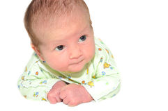 Newborn Baby Child on White Background Royalty Free Stock Photography