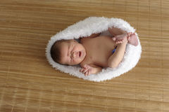 Newborn baby in a cocoon Royalty Free Stock Photo