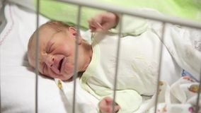 Newborn baby cry in hospital.  stock footage