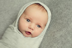 A newborn baby is 9 days old wrapped in a grey cloth like a Russ Royalty Free Stock Image