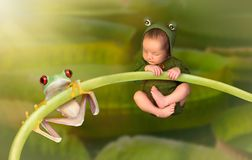 Newborn baby dressed as a frog stock photography