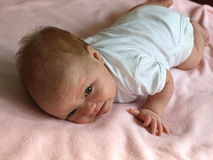 Newborn baby exercises. Four week old newborn trying to lift his head royalty free stock image