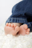 Newborn baby feet Stock Image
