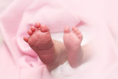 Newborn baby feet Royalty Free Stock Images