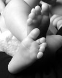 Newborn Baby Feet. Feet of a newborn baby against a black background stock photo