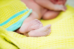 Newborn baby feet Stock Photography