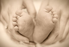 Newborn baby feet on female hands Royalty Free Stock Photography