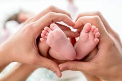 Newborn baby feet on mom and dad hands, shape like a lovely heart. happy family concept. Baby care. Close up stock images