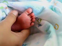 Newborn Baby Feet. In Mom Hand stock photo