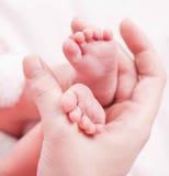 Newborn baby feet. Mother holding newborn baby feet Royalty Free Stock Photos