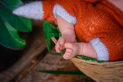 Newborn baby feet Royalty Free Stock Image
